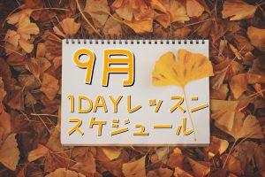 1day-kimono-lesson-september-2016
