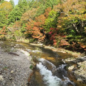 aomori-sight-seeing-spot-shimokita