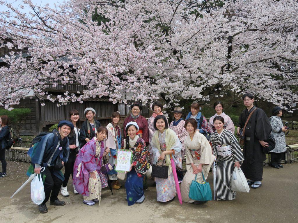 【イベントレポ】着物組in青森「弘前公園でお花見しよう♪」