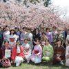 【イベントレポ】4/29第2回弘前公園で着物でお花見しよう♪